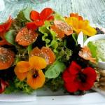 Nasturtium-Salad